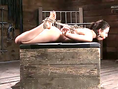 Hogtied bitch Melissa Moore flashes her awesome pink pussy