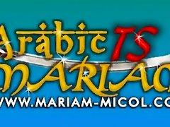arabic ts